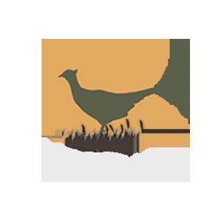 Faasan.ee Logo